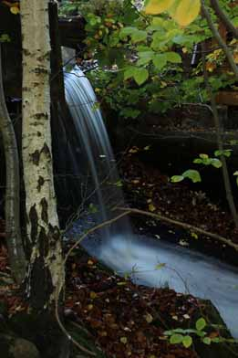 Clemens Müller 5 Wasserfall Ilsetal