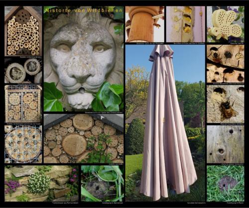 22 - Nistorte von Wildbienen